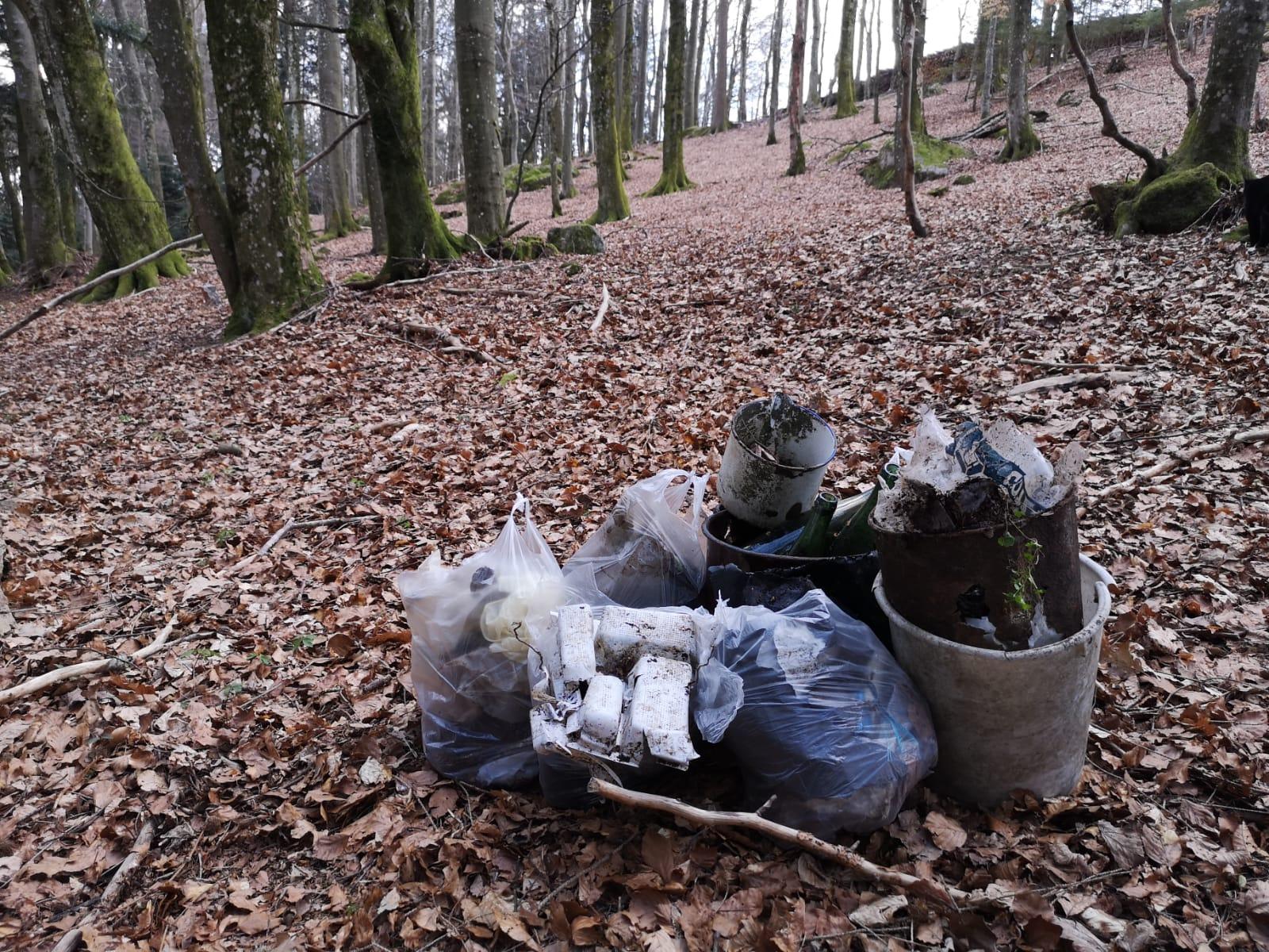 Müllsäcke im Wald, von den eifrigen Sammlern