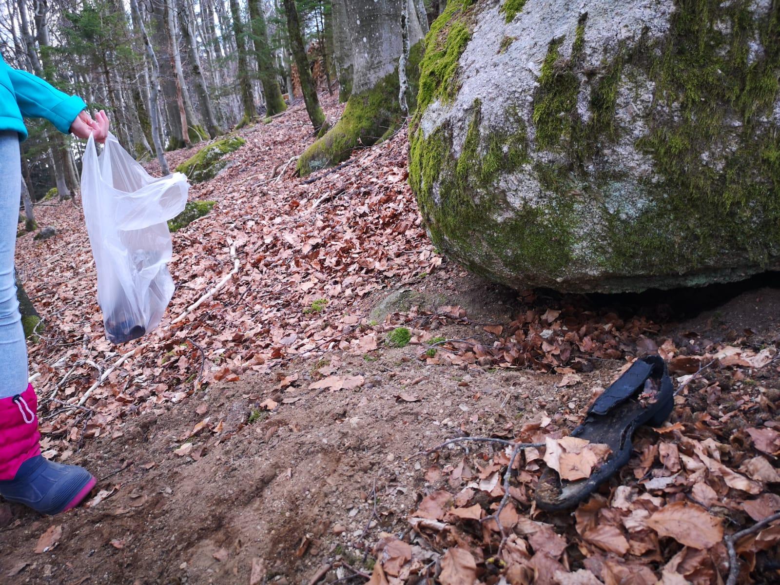 Ein Schuh im Wald