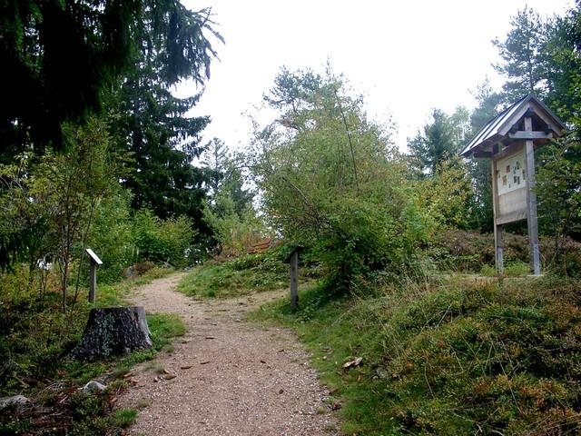 Baumlehrpfad Dachsberg