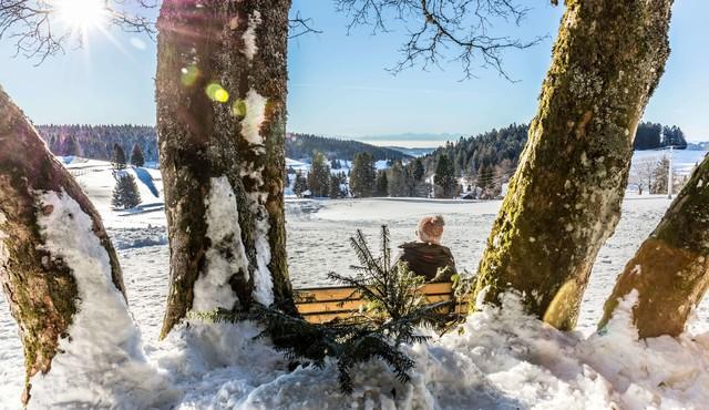 Winterwandern Herrischried