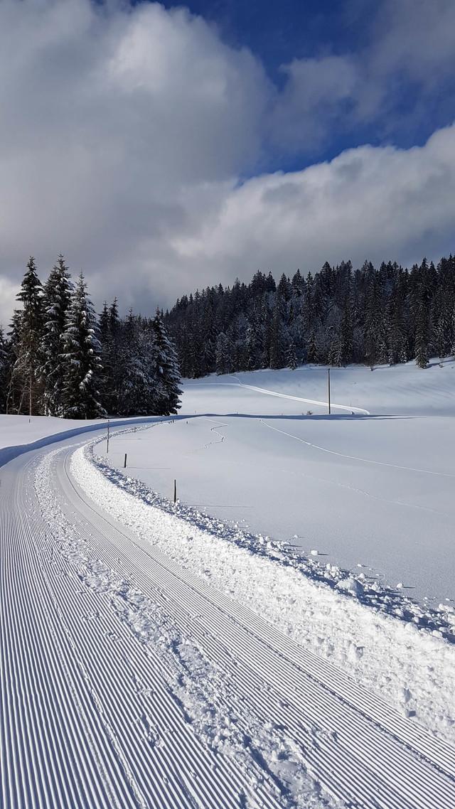 Winterwandern Ibach