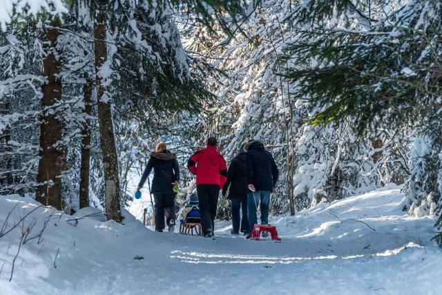 Winterwandern Höchenschwand