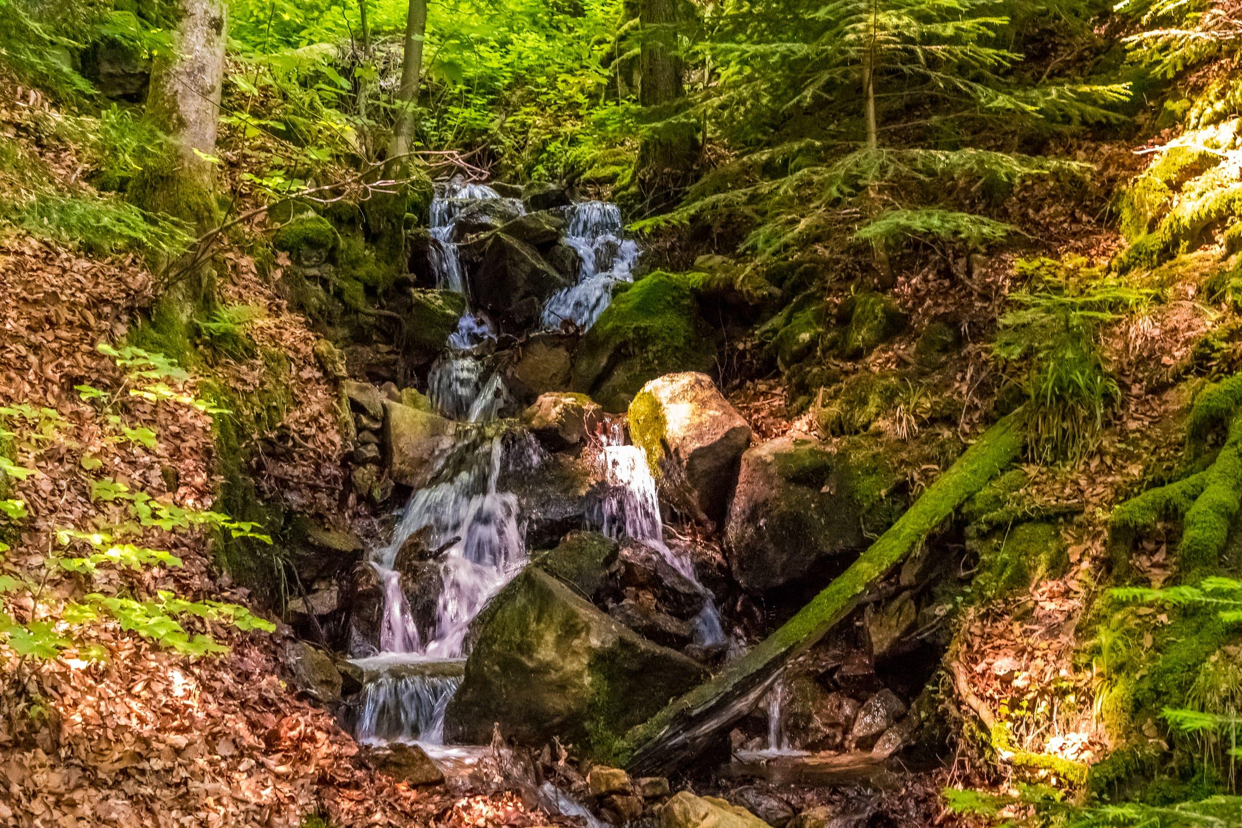 Wehraschlucht, ein kleiner Wasserfall im Wald